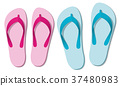 Sandals Thongs Colors Summer Footwear 37480983