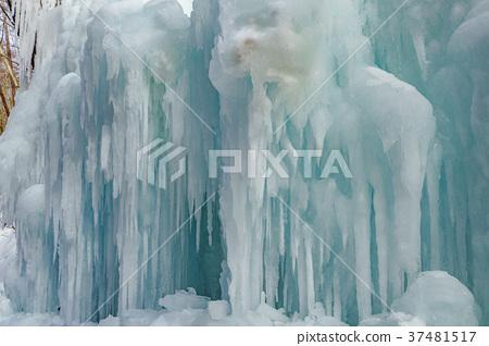 [Nagano Prefecture] Ice pillar of Shiraito Falls 37481517