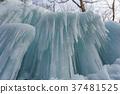 [Nagano Prefecture] Ice pillar of Shiraito Falls 37481525