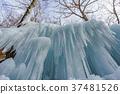 [Nagano Prefecture] Ice pillar of Shiraito Falls 37481526