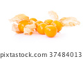 Fresh cape gooseberry fruit with high vitamin C on 37484013