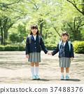 小學生 新生 一年級學生 37488376