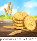 Vector realistic wheat cookies packaging ad 37488715