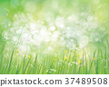 Vector summer,  green,  nature  background. 37489508