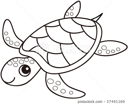 - Sea Turtle Coloring Page - Stock Illustration [37491160] - PIXTA