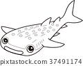 물고기, 생선, 선화 37491174
