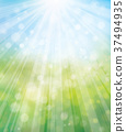 Vector summer, nature  background, blurred effect. 37494935