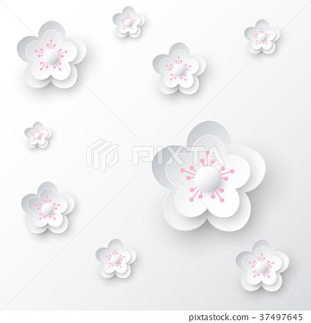 White Cherry Blossom Abstract Background 37497645
