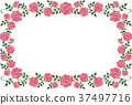 frame flower flowers 37497716