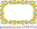 frame flower flowers 37497718