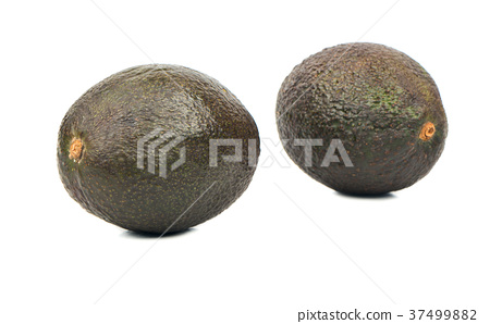 Two avocado Hass 37499882