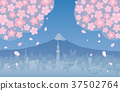 cherry blossom, shower of falling cherry blossom petals, fuji mountain 37502764