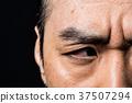人臉 臉部 臉 37507294