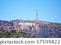 對象,好萊塢 37509822