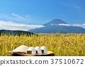 富士山 晴朗 晴天 37510672
