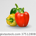 Set of three peppers. Yellow, red and green pepper 37512808