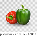 Vector realistic illustration of sweet pepper. 3d 37512811