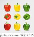vector, pepper, paprika 37512815