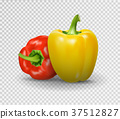 Set of two peppers. Yellow, red pepper. Vector 37512827