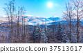 Carpathian Mountains 37513617