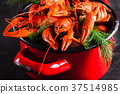 Boiled lobster close-up 37514985
