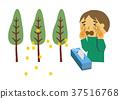 꽃가루 알레르기와 삼나무 일러스트. 알레르기의 이미지 일러스트. 37516768