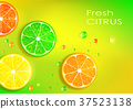 grapefruit, lemon, lime 37523138