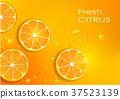 orange background 37523139