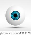 眼睛 目光 人類 37523165