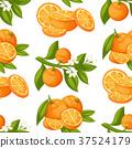 orange, fruit, illustration 37524179