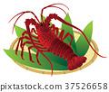 大螯虾 龙虾 小虾 37526658