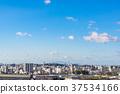 [효고현] 히메지의 거리 풍경 37534166