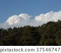藍天和白色雲彩在Inage海灘停放 37546747