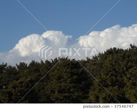 蓝天 蓝蓝的天空 蓝色 37546747