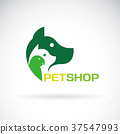 pet, dog, cat 37547993