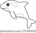 วาฬเพชรฆาต,น่ารัก,คาวาอิ 37548059
