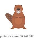 Cute cartoon flat vector standing beaver character 37549882