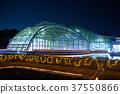 식물원, 조명, 식물 37550866