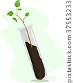 Test Tube Plant Illustration 37553233