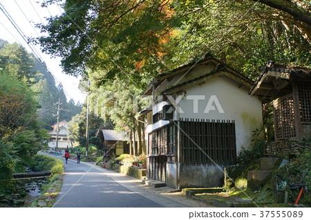 Iwami Ginzan長廊 37555089