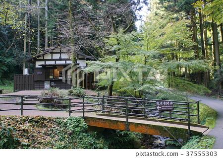 Iwami Ginzan隧道入口信息中心 37555303