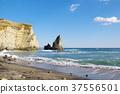 해안, 바닷가, 바다 37556501