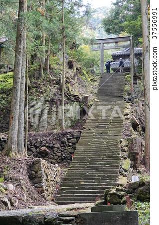Iwami Ginzan Saeki Ayama Shrine 37556991