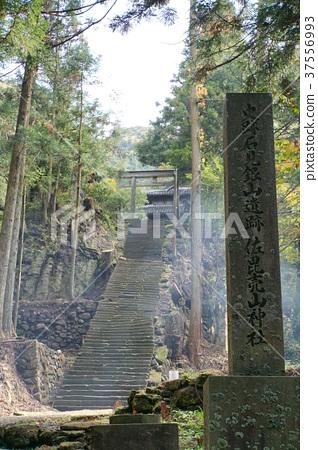 Iwami Ginzan Saeki Ayama Shrine 37556993