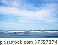 파도, 바다, 해변 37557374