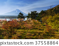 Sakura at Shoji lake with Mt. Fuji 37558864