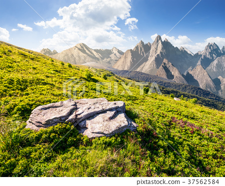 composite of grassy meadow and rocky mountains 37562584