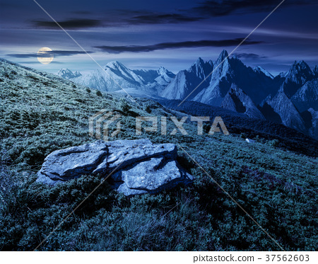 composite of meadow in rocky mountains at night 37562603