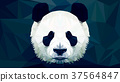 panda head polygon isolated vector 37564847