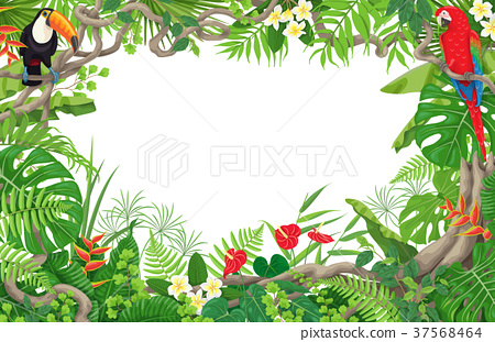 Tropical Plants  and Birds Frame 37568464